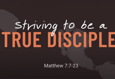 Striving to be a true disciple